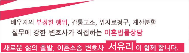 이혼소송 변호사 - 서유리